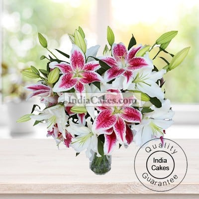 6 STEM OF LILY BUDS AND 12 LOVELY PINK ORIENTAL LILIES BUNCH
