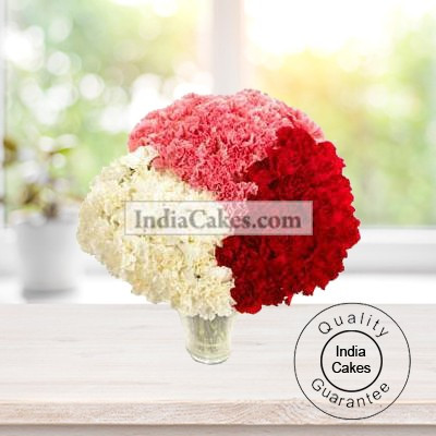60 RED, WHITE AND PINK CARNATIONS BUNCH