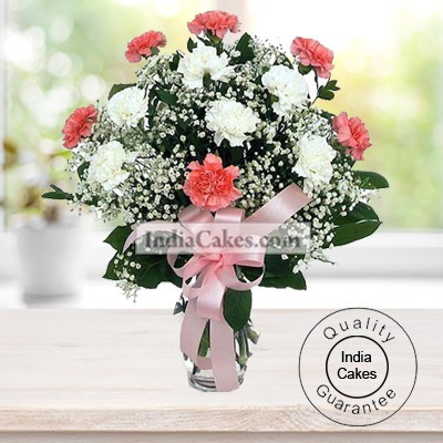 10 PINK AND WHITE CARNATIONS BUNCH