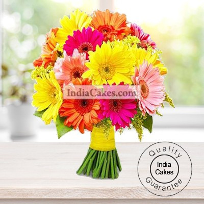 HAND BUNCH OF 20 GERBERAS