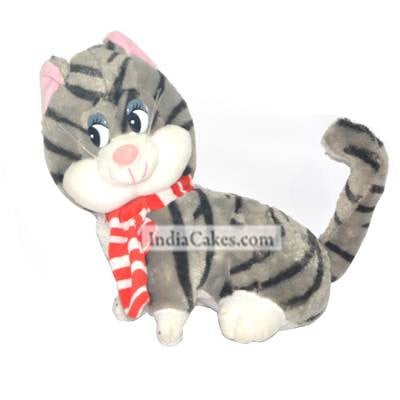 Cat Softtoys