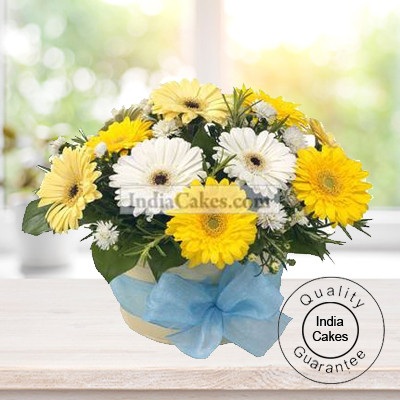 YELLOW AND WHITE GERBERAS BUNCH