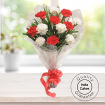 10 RED AND WHITE CARNATIONS BUNCH