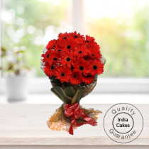20 RED GERBERAS BUNCH