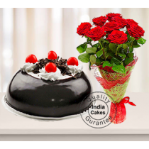 Half Kg Black Forest Gel Dome Cake with 9 Red Roses