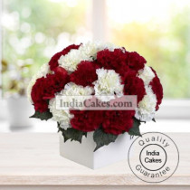 10 RED AND 10 WHITE CARNATIONS BUNCH