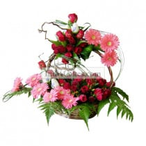 10 Roses and 5 Gerberas in Basket