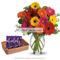 12 Mixed Gerberas Bunch And 5 Cadbury Dairy Milk Chocolates