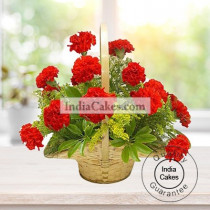 25 RED CARNATION ARRANGEMENT