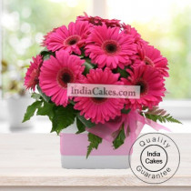 7 PINK GERBERAS IN GLASS VASE