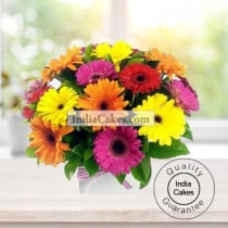ARRANGEMENT OF 20 MIX GERBERAS
