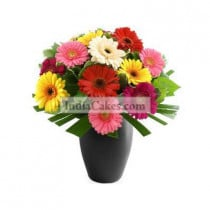 Mixed Gerberas with Vase