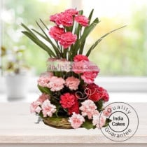 36 MIX CARNATIONS ARRANGEMENT