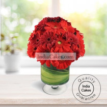 RED GERBERAS WITH VASE