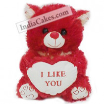 Red Color Teddy Bear 30 cm