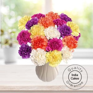 10 MIXED CARNATIONS BUNCH