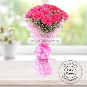 10 PINK CARNATIONS BUNCH
