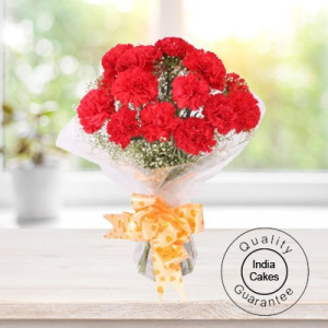 10 RED CARNATIONS BUNCH
